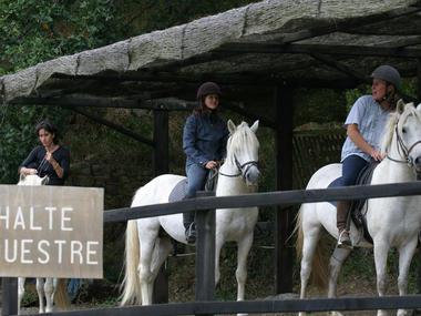 Centre de Tourisme Equestre Le Roc Au Loup