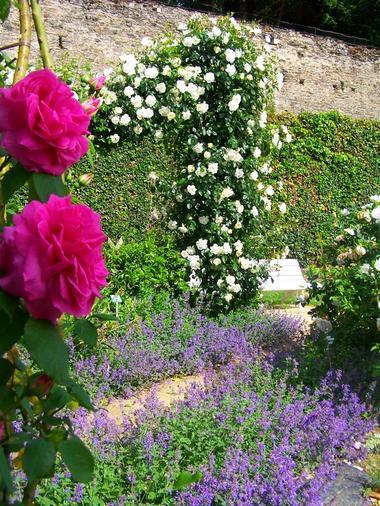 PCU-jardin-des-senteurs (3)