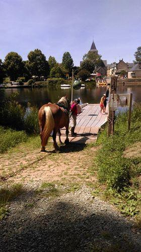 bac ménil chevaux slowlydays TRAIT NATURE