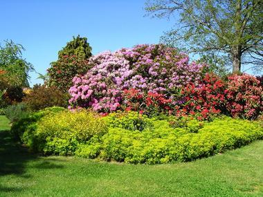jardins-des-renaudies-colombiers-du-plessis-53-pcu-39
