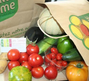 producteur maraicher horticulteur légumes fleurs 53 Mayenne vente directe CAGEOT DU MARAICHER 600