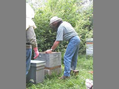 ecomusee_apiculture5_800
