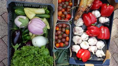 legumes-picdepan-arrensmarsous-HautesPyrenees
