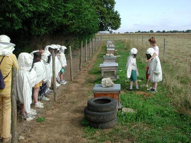 DEG53-la-ferme-des-abeilles-1