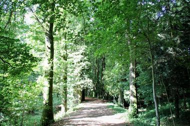 Arboretum et parc de 12 ha