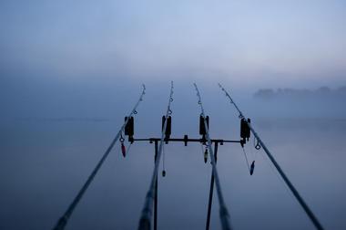 Visuel pêche