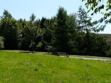 Arboretum de lisieux (3)
