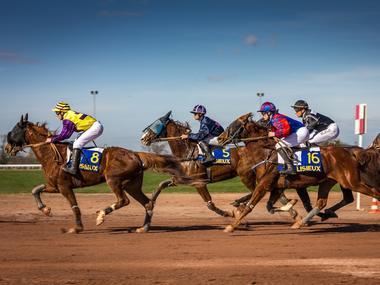 Arrivée course hippodrome Lisieux ©Fabien lestrade