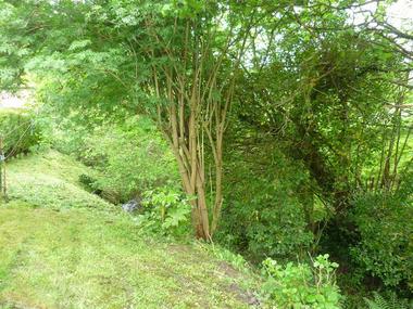 Au cours du ruisseau - Magali Guerard - gite à Saint Germain de Livet (5)