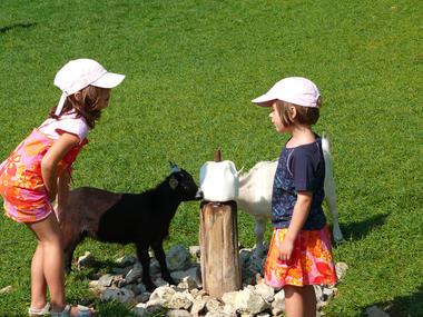 Famille au zoo de Cerza près de Lisieux