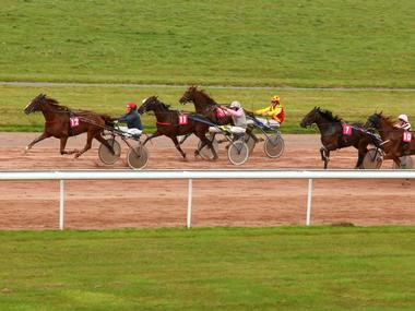 Hippodrome Lisieux course