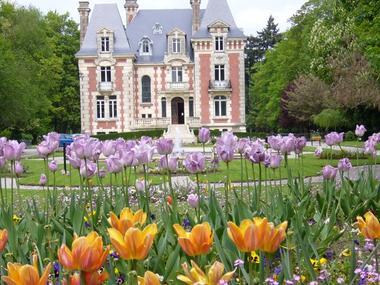 Parc du Manoir de l'Ile à Livarot pres de Lisieux Tulipes