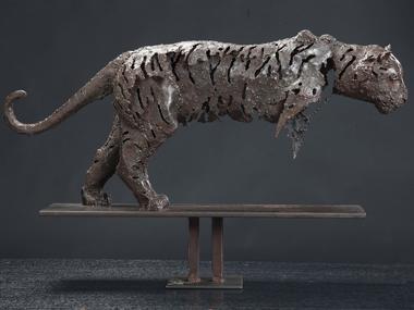Transparence tigre-hauteur 35cm