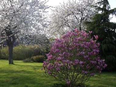 jardin-manou-percy-auge