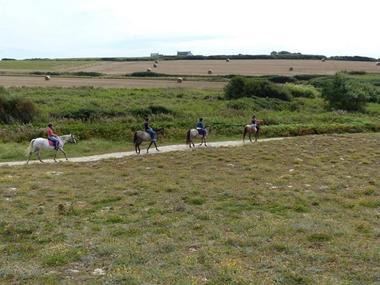 centre-equestre-triskel-Plozevet-Pays-Bigouden - 1