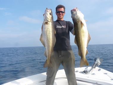 Mastafish