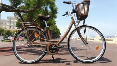 Dingo Vélos (6)