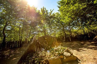 Tombeau de Merlin forêt de Brocéliande