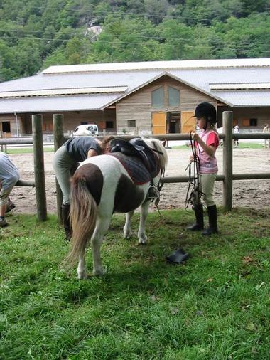 centre equestre 1
