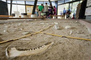Atelier archéologie