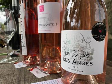 Les vins de Montauban