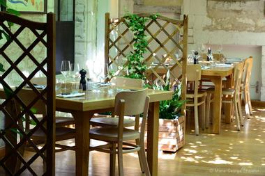 salle vigne détail