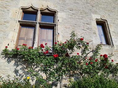 maison médiévale à Flavigny