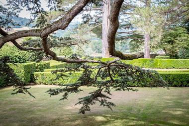 Jardin à la française XVIIIe s.