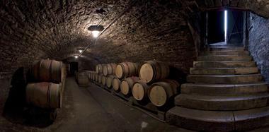 Domaine Dufouleur Caves