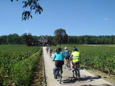 Tour guide en vélo