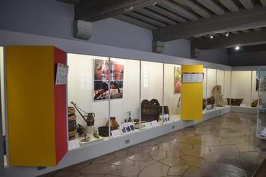 Salle des travaux du vin