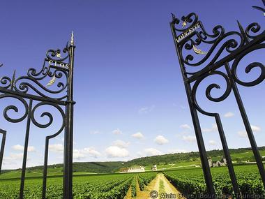 OP031BOU000V5066PF - Clos-Vougeot_Photo-Alain-Doire_Bourgogne-Tourisme
