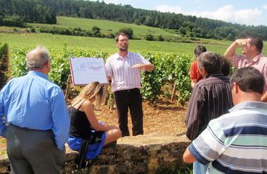 Lecture de paysage Ecole des Vins