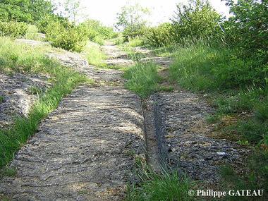 auxy-voie-romaine-p-gateau-170188