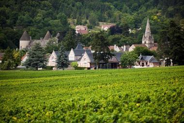 savigny-les-beaune-8-200218