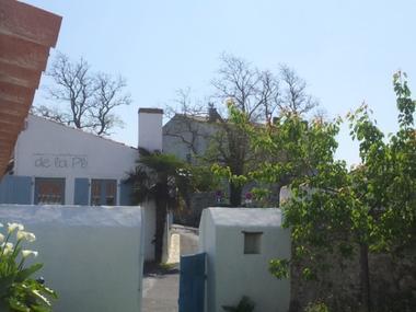 n-15-vue-jardin-vers-le-sud-114620