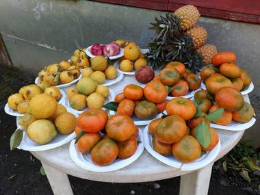 Kiosque des Mandarines