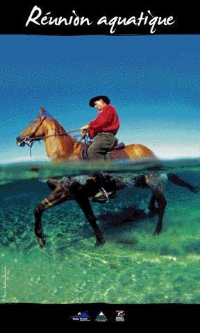 Ferme Equestre du Grand-Etang