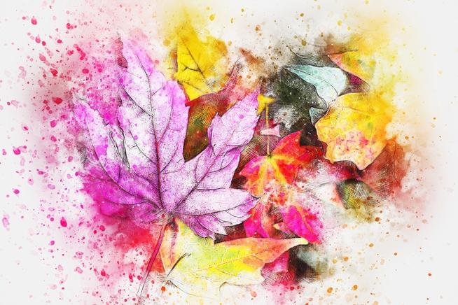 leaves-2630470_1920.jpg