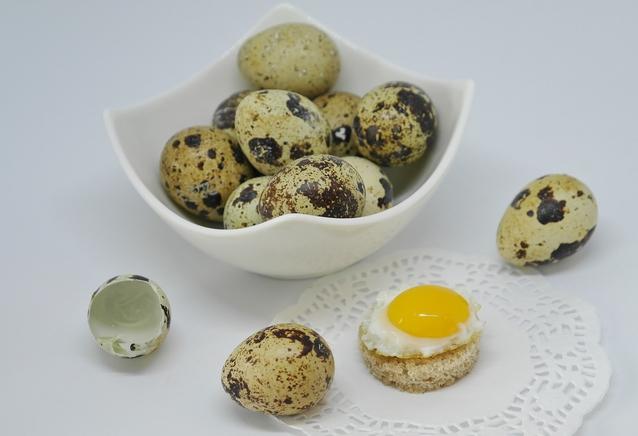 egg-3240281_1920.jpg