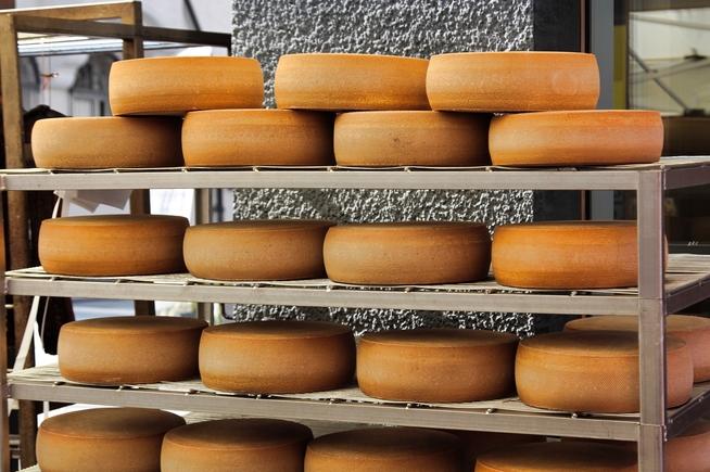 cheese-4211625_1920.jpg