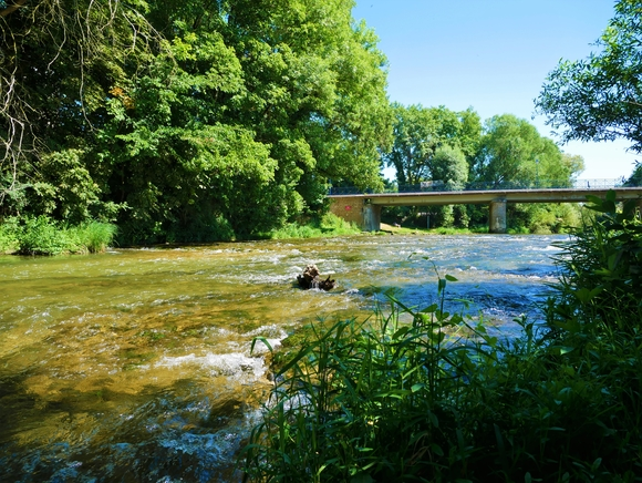 Dienville - ®OT Grands Lacs de Champagne (5).JPG