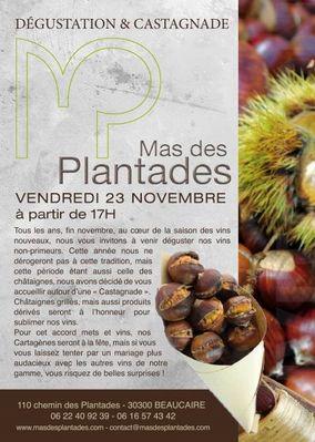 Affiche Mas des Planatdes.jpg