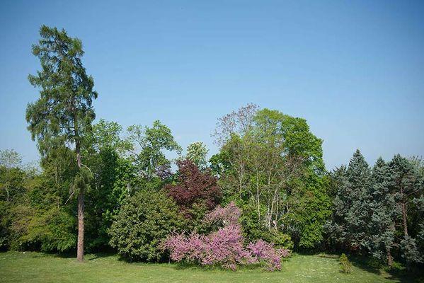 Parc-coté-nord.jpg