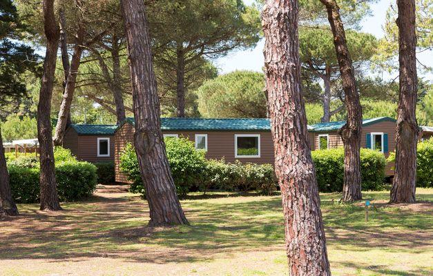 23_12_location-ile-de-re-camping-odalys-tamarins-plage-23.jpg