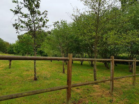 Arboretum - La Bussière ©OTVG (4).jpg