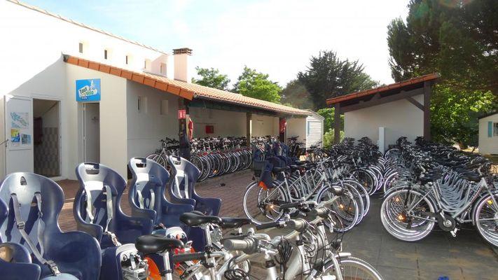 vélos en location TOUT A VELO.JPG