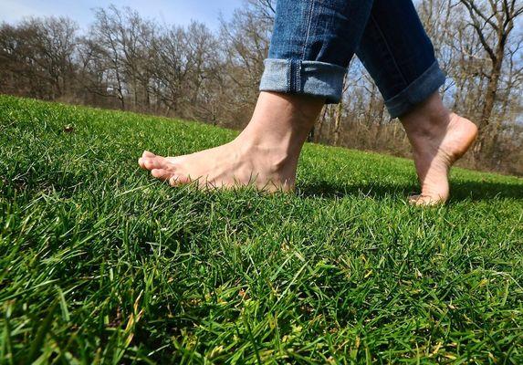 sentier-pieds-nus-loisirs-loire-valley-pelouse.jpg