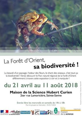 Copyright © 2018 Maison de la science Hubert Curien, All rights reserved..jpg