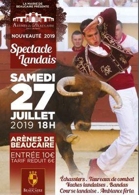 Affiche spectacle Landais.JPG